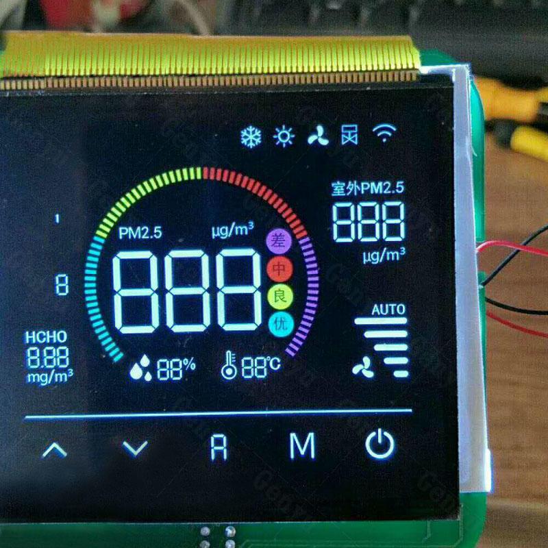 Custom LCD Display Segment GY06254NM