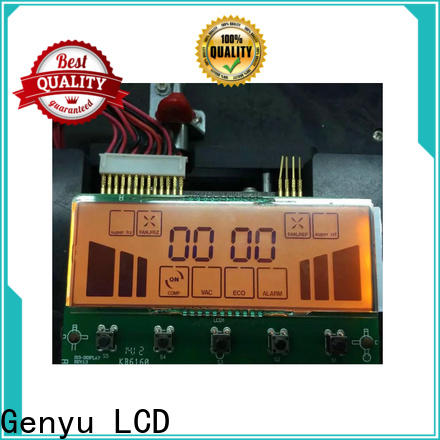 New segment lcd display customized for video