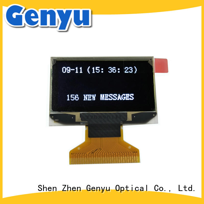 China OLED display manufacturer screen for smart watch