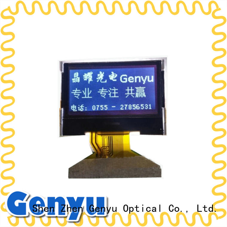 Custom Small Size Monochrome lcd Display 128*64 LCD Supplier