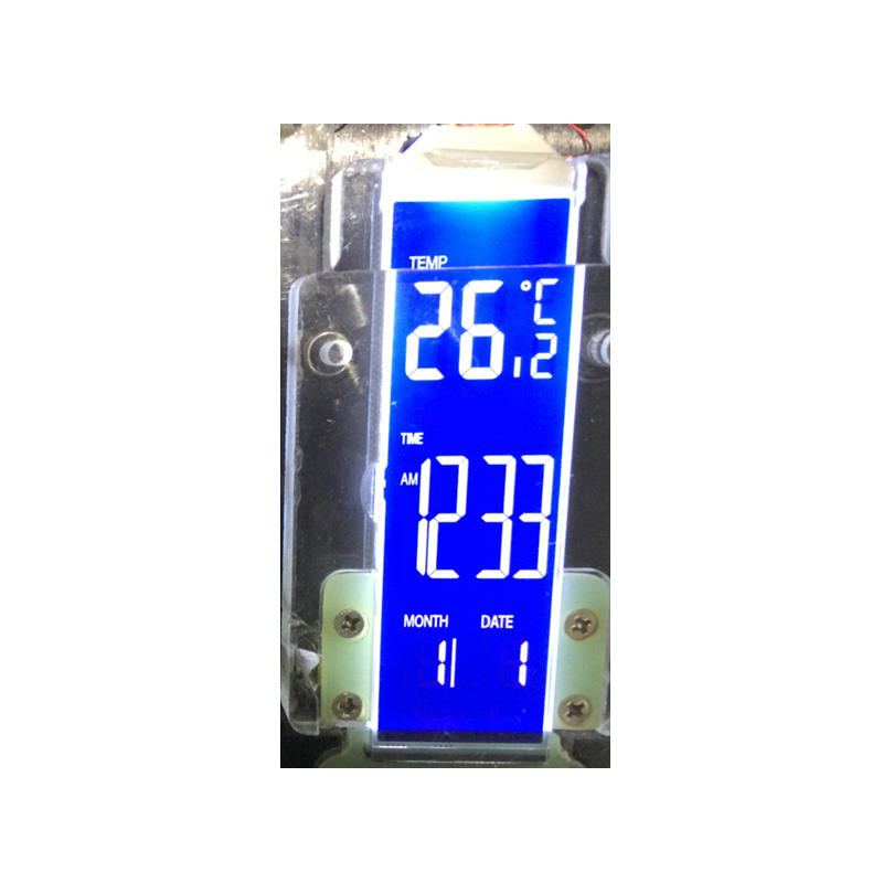 Custom Segment LCD Display GY0701