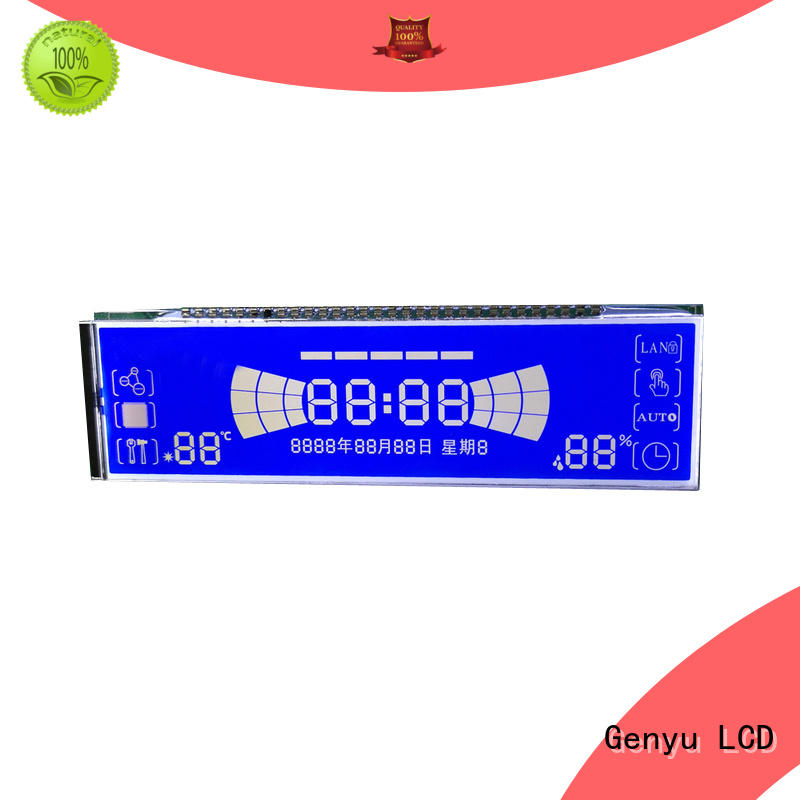 Custom segment lcd display customized for instrumentation
