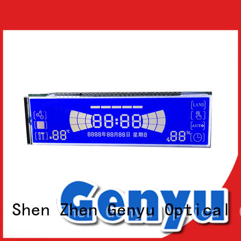 Custom Segment LCD Display GY06478